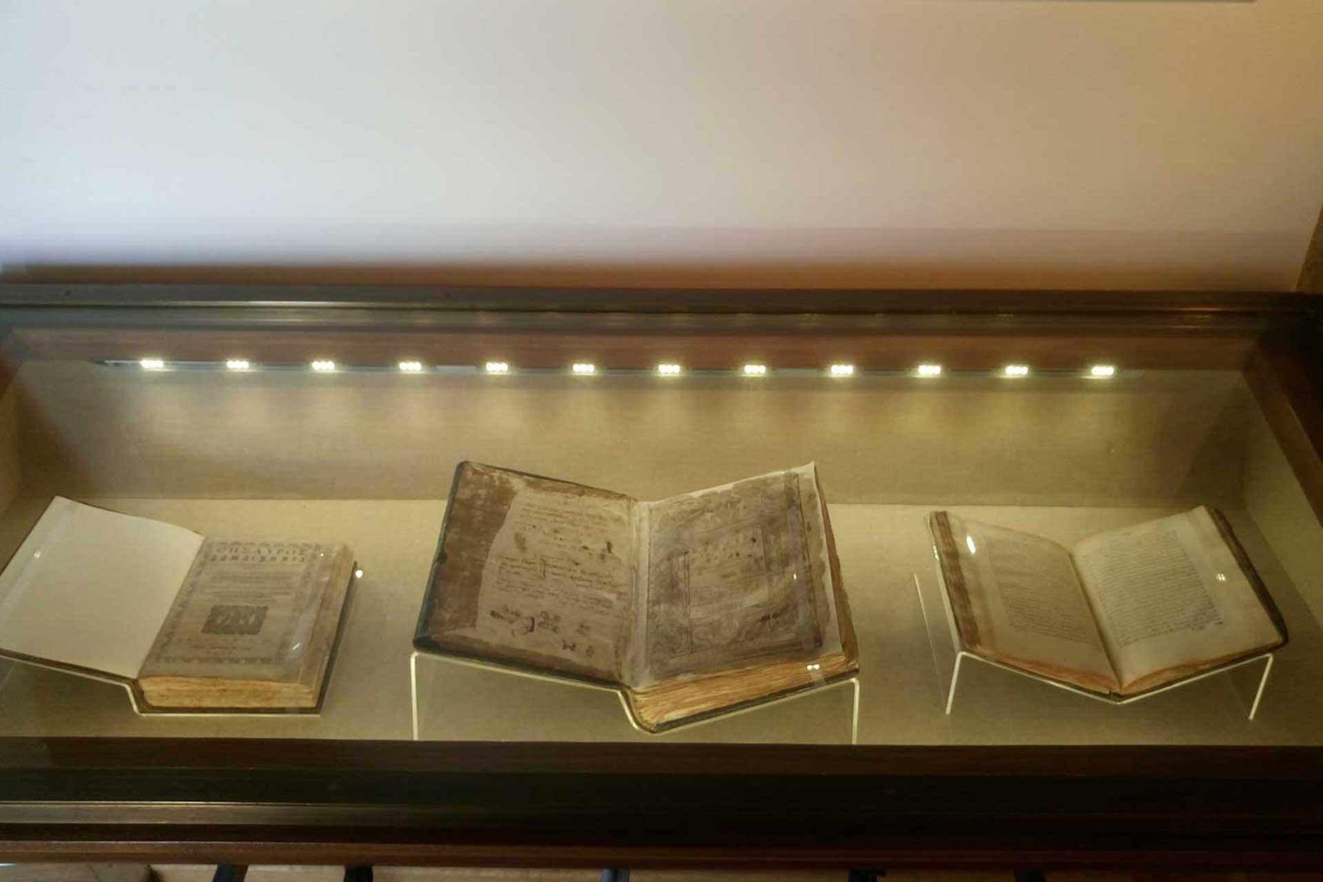 museum-vitro